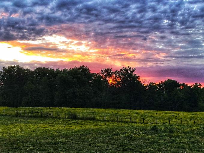 Pine Hill Farm sunrise.jpg