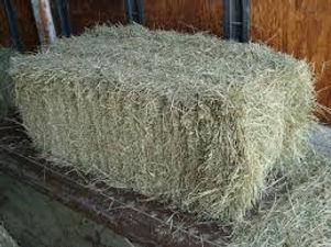Bale of hay.jpg