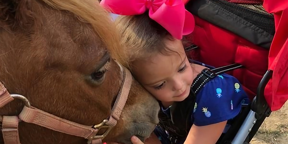 PRIVATE EVENT:  Foster Care Family Farm Visit