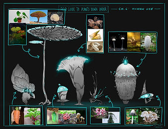 Plant_materials.jpg