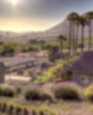 KeysCreek_WideOverview.jpg.png