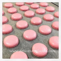 Rose #macarons #macaron #coquesdemacaron