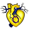 Intersex Heart