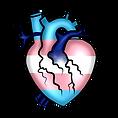 Pride Heart Trans