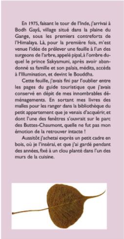 L'herbier des mythes page 1 Alain Nadaud alainnadaud.com