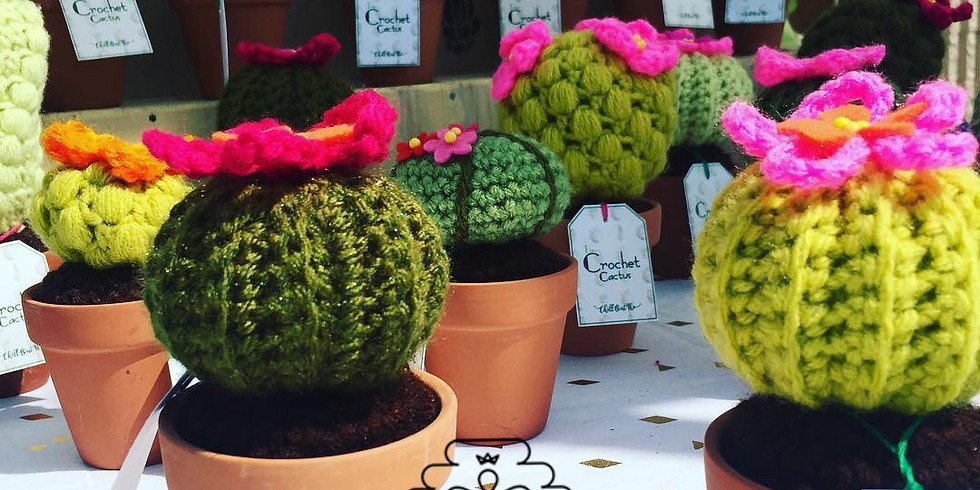 Little Crochet Barrel Cactus -  2 Days Session