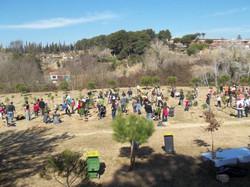 festa-arbre-2012-5