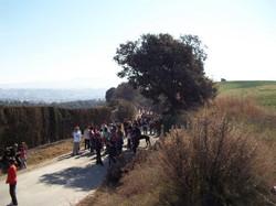 festa-arbre-2012-1