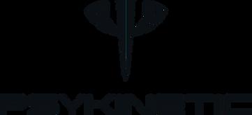 Psykinetic_Logo_edited.png