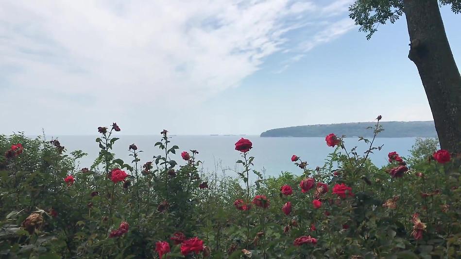Sea Garden, Varna