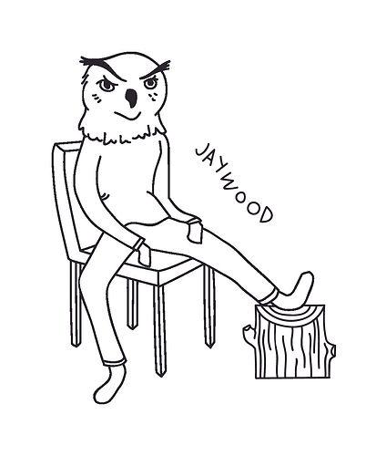 owl1-0.jpg
