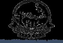 BoldSpringsAcademy_logo.png
