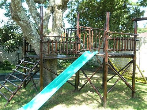 around the tree 2.jpg