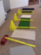 proprioceptive training.jpg