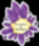 Logo-maison-amethyste-auvergne-vernet.pn