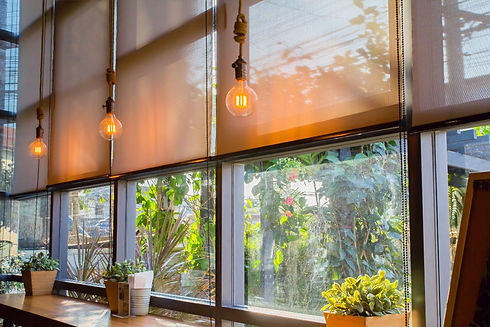 roll%20blinds%20to%20protect%20sunlight%