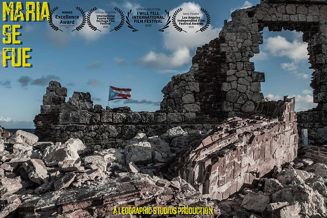 MSF Landscape poster updated.jpg