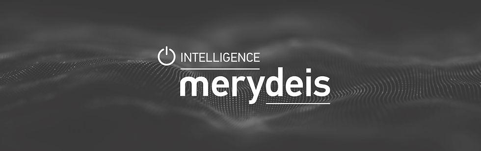 Banner_Merydeis_Inteligence.jpg