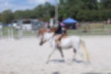 kids Horse show