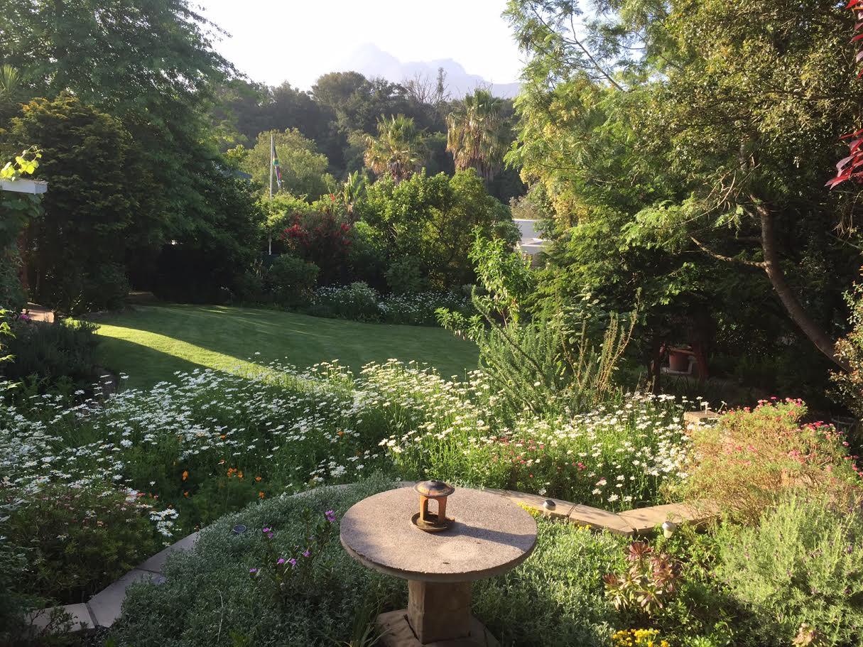 Wiltshire garden