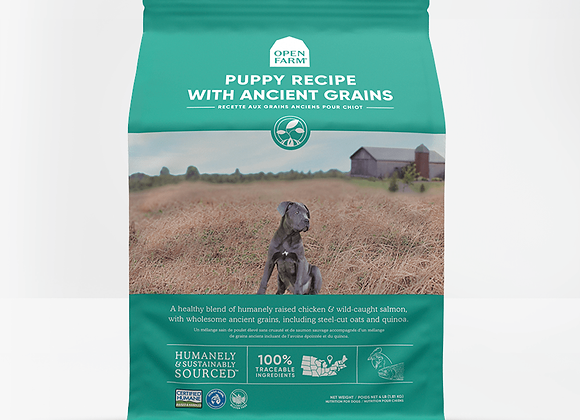 Puppy Recipe With Ancient Grains