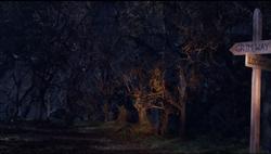 Forest Set