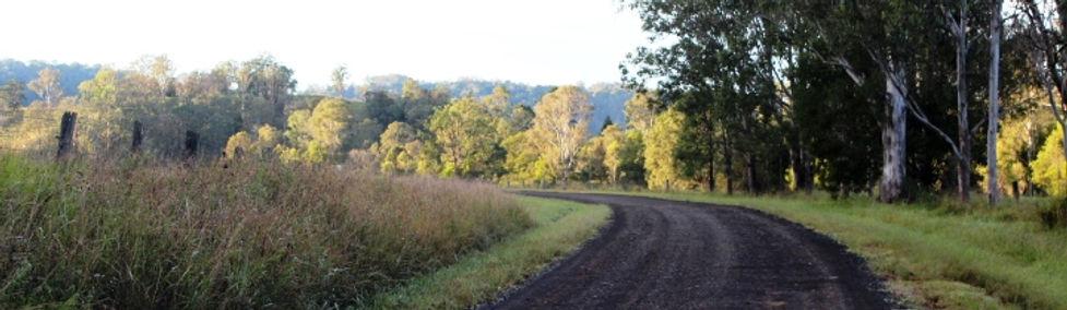 morning walk journeylines