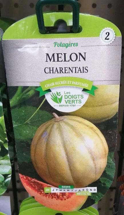 Melon charentais n°2