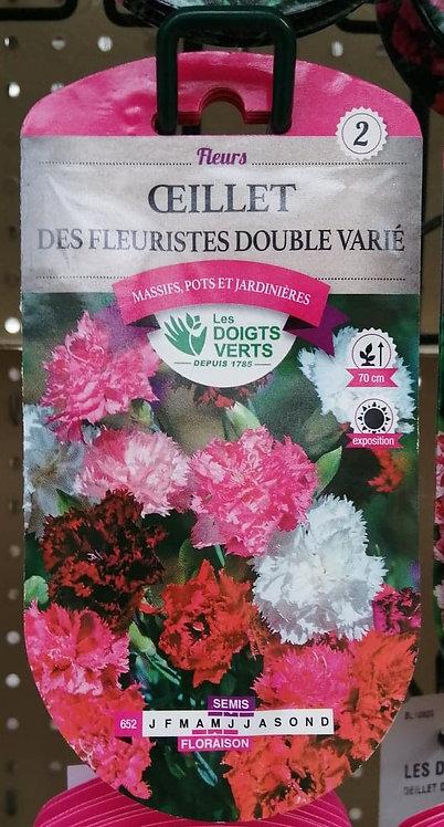 Oeillet des fleuristes double varié n°2