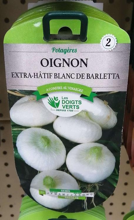 Oignon extra-hâtif blanc de Barletta n°2