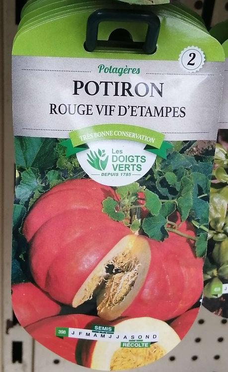 Potiron rouge vif d'Etampes n°2