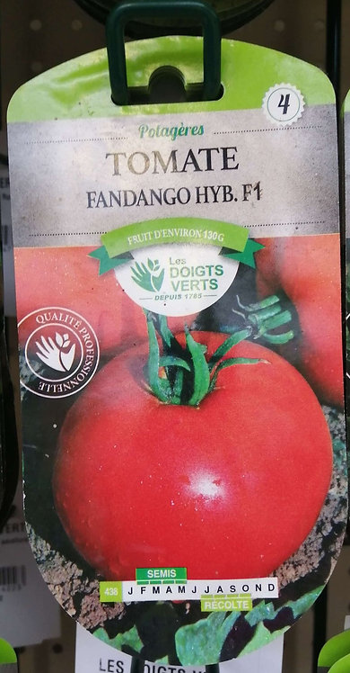 Tomate fandango hyb f1 n°4