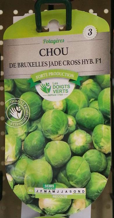 Chou de Bruxelles jade cross Hyb F1 n°3