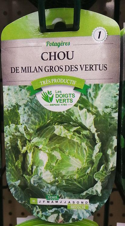 Chou de Milangros des vertus n°1