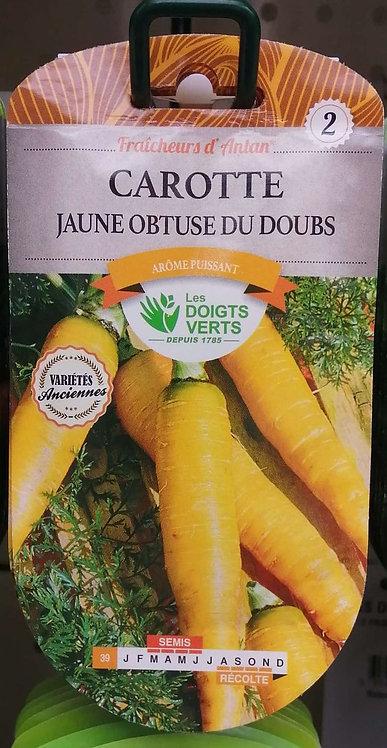 Carotte jaune obtuse du Doubs n°2