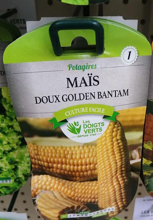 Maïs doux golden bantam n°1