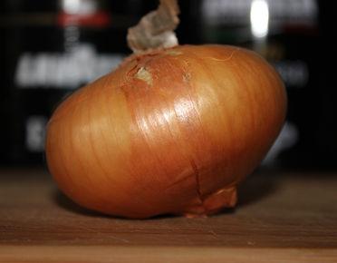 Oignons, échalotes, ail | jardinerie-laserre