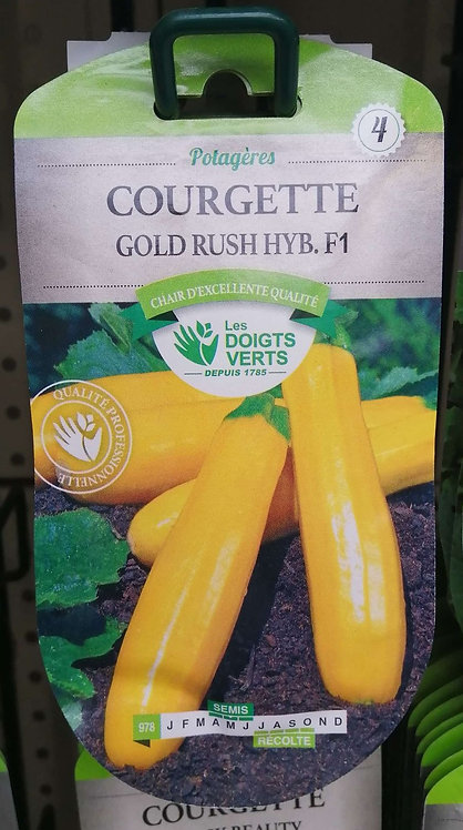 Courgette gold rush hyb f1 n°4