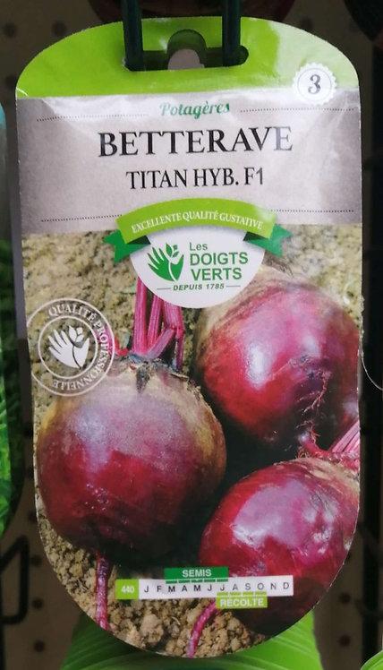 Bettrave Titan hyb F1 n°3