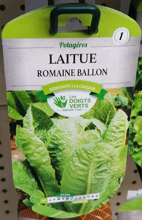 Laitue romaine ballon n°1