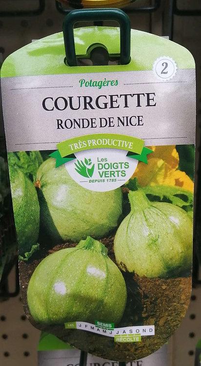 Courgette ronde de Nice n°2