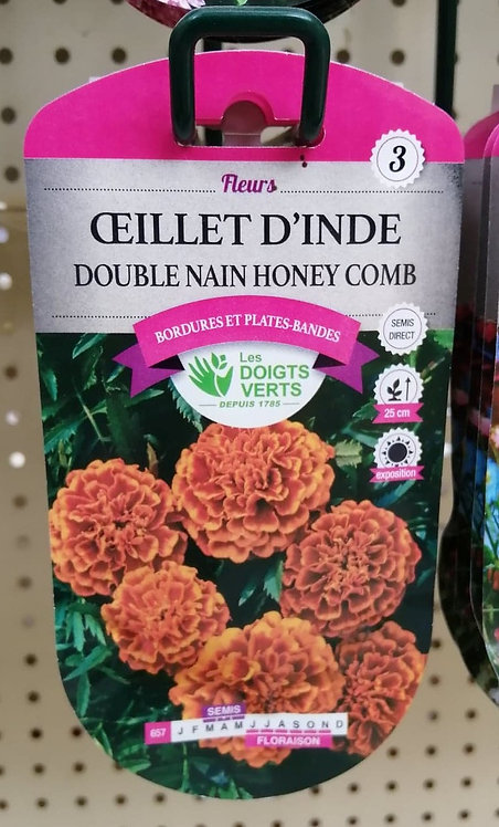 Oeillet d'Inde double nain honey comb n°3