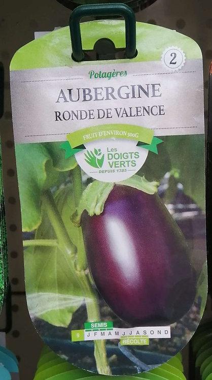 Aubergine ronde de Valence n°2