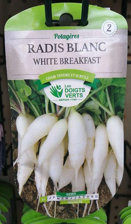 Radis blanc white breakfast n°2