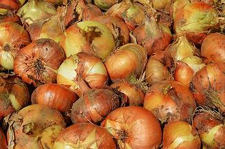 onion-858465_1920.jpg