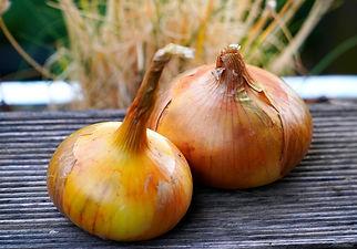 onions-5437569_1920.jpg
