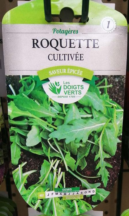 Roquette cultivée n°1