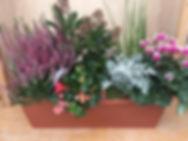 Composition jardinière automne/hiver