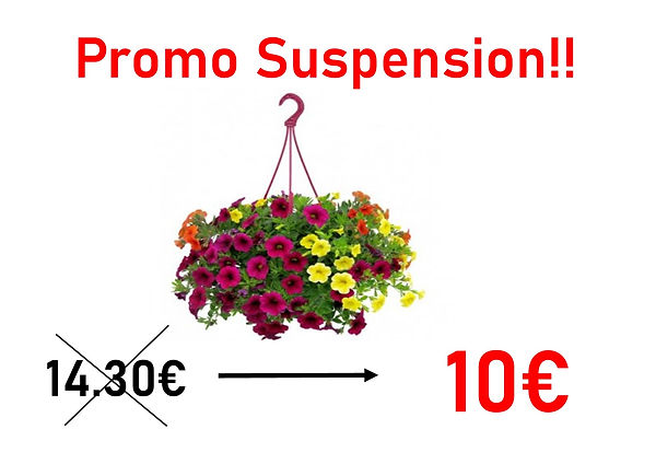 Supension.jpg