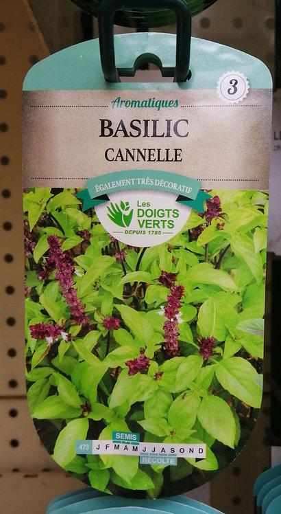 Basilic canelle n°3